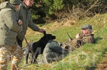 05scottish gundog association