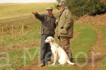 17scottish gundog association