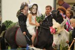 Kate and Wills take part in the fancy dress