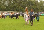 Fancy dress competitors parade in main ring