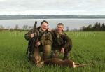 Roe buck stalk 1
