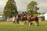 Clydesdale class