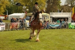 Cantering Clydesdale