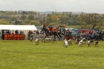 Fife hunt take to the main ring