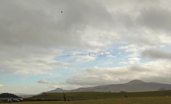 Big views high birds Wellfield Fife