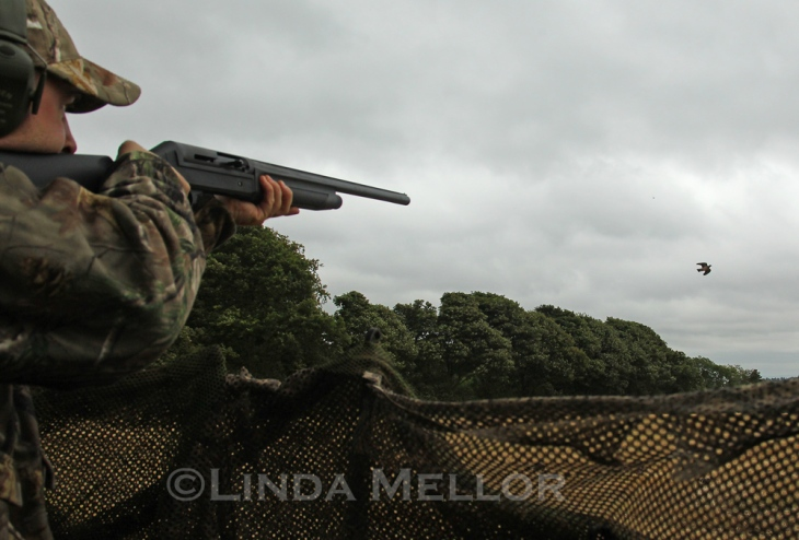 Pigeon shooting with Mark Robson