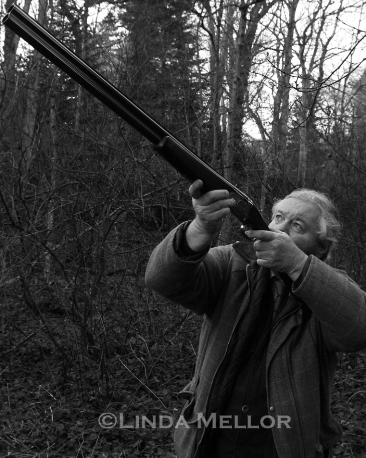 Rossie Priory Driven Pheasant shoot