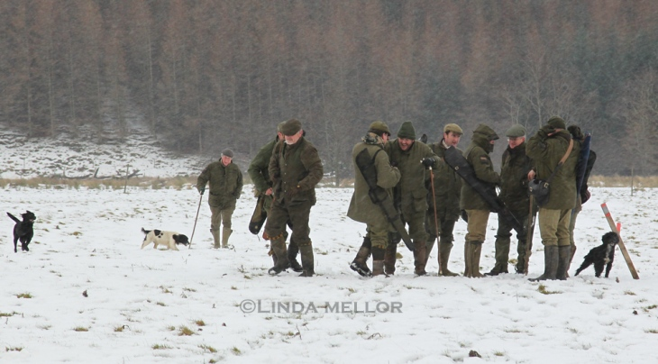 Wintry day at the Glen Clova shoot