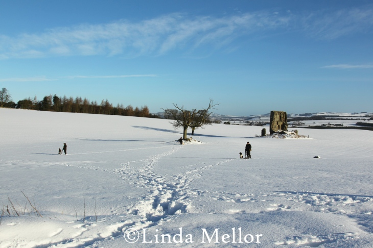 Shooting in the snow on Balbirnie Estate, Fife