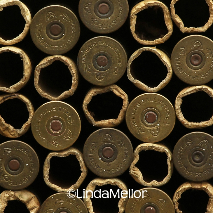 Brass cartridge shells