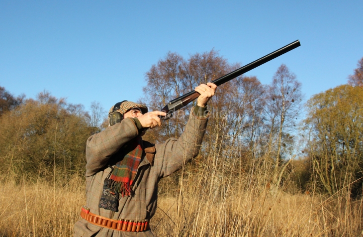 Driven pheasant shooting