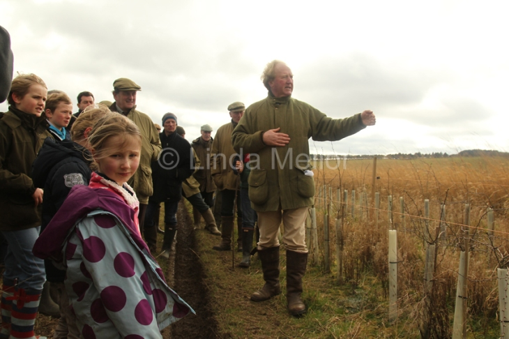 shoot walk and grey partridge conservation