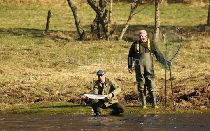Salmon fishing, Newtyle, Tay, Scotland