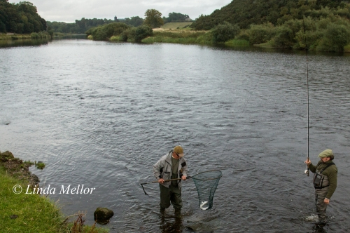 Salmon fishing on the tweed