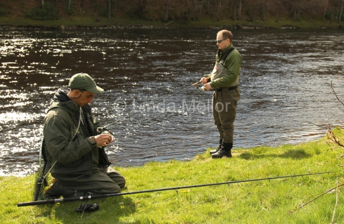 salmon fishing at newtyle, the tay