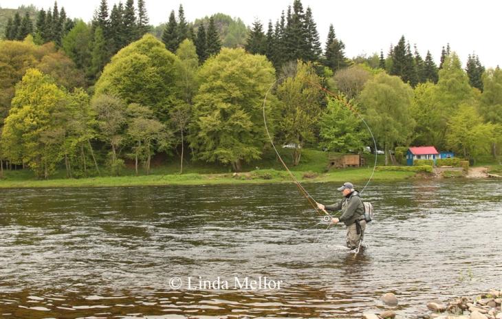 Salmon fishing, casting, fly fishing, newtyle