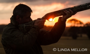Sunset, wildfowling silhouette using a semi-automatic shotgun.