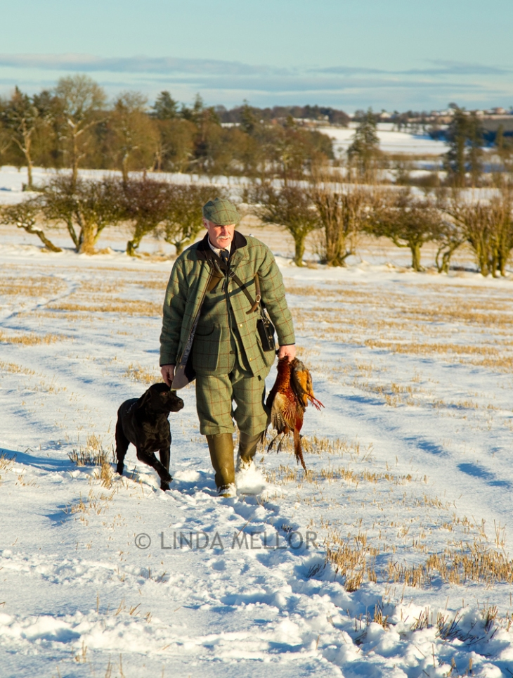 Gamekeeper in the snow with dog at heel, Scotland
