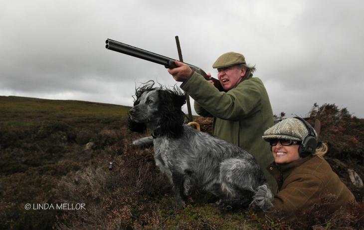 driven_grouse_shooting_scotland